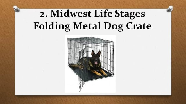 Top 10 Best XXL Dog Crates and XXXL Dog Crates