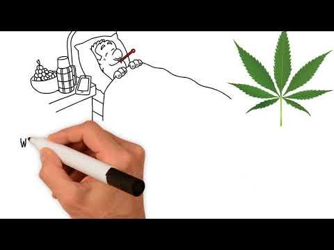 Four Essential Benefits of Medical Marijuana