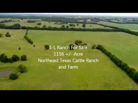 Cattle Ranch For Sale In Delta County Texas