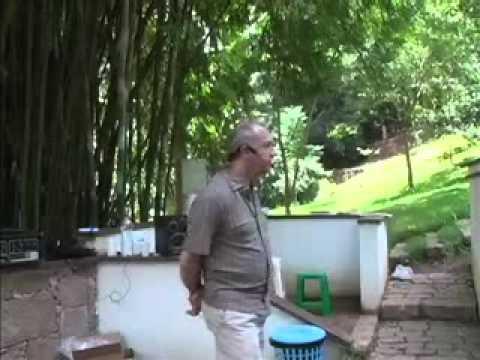 Física Quântica e Espiritualidade - Laércio B. Fonseca