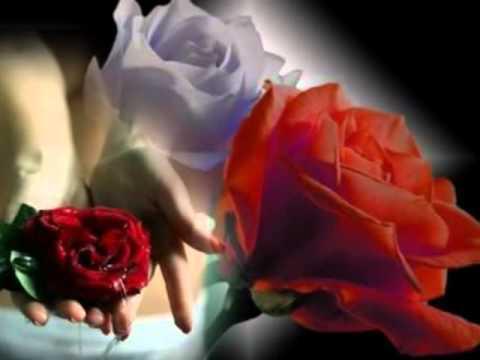 fica sempre um pouco de perfume  nas mãos que oferecem rosas