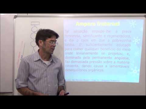 Gelson - Palestra - Espiritismo - Amparo Fraternal