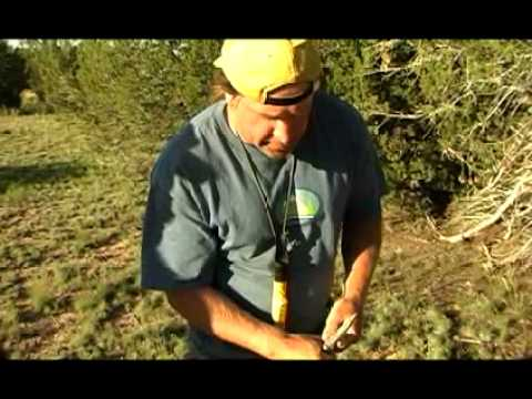 Making a bowdrill set with Cody Lundin