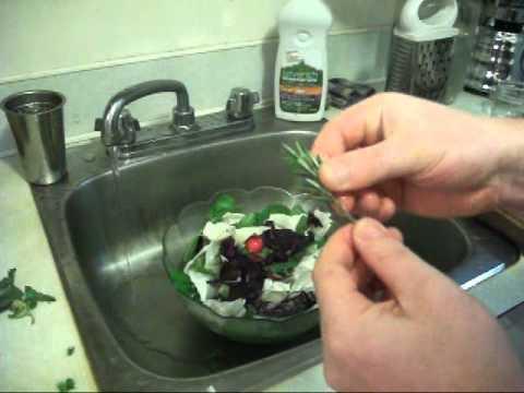 LIVER CLEANSING DIET - Raw Salad & Dressing Fennel, Red Radish, Dikon, Golden Beet, Pumpkin Seeds