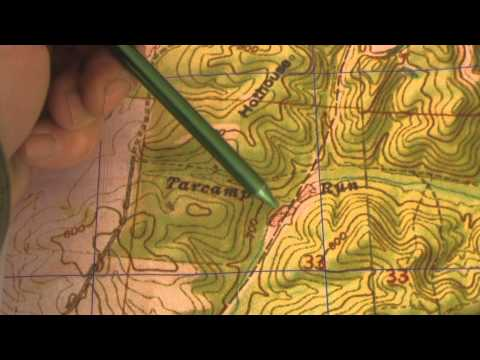 5 Navigation Techniques Every Woodsman Should Know