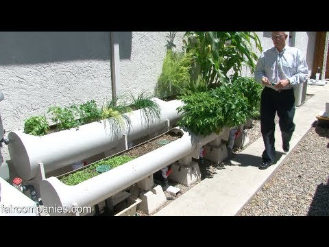 Internet of Farming: Arduino-based, backyard aquaponics