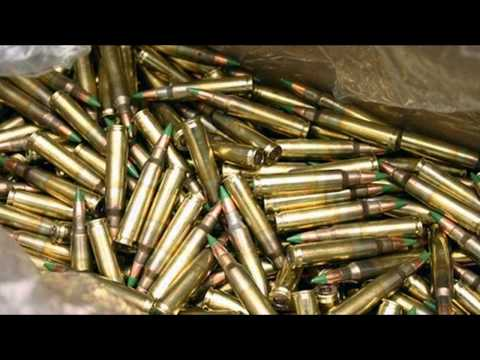 Ammunition and Firearms Protection Act: LEARN ABOUT IT!