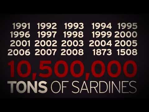 Natural Numbers 01 - Sardines