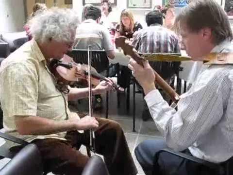 Steven Hawson (tenor banjo) and Yigal Zan (fiddle) with a few tunes