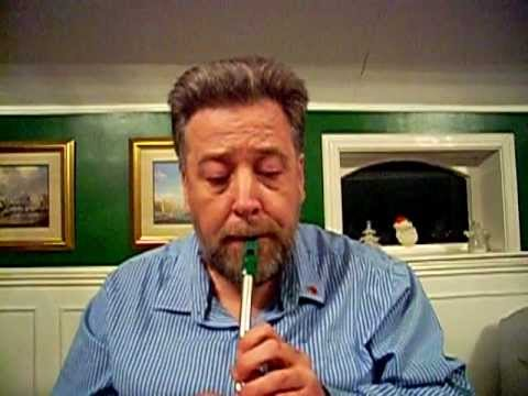 Kornbodsmarschen on Tin Whistle