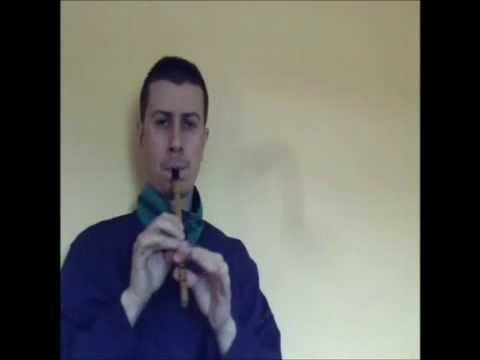 "Enda Seery Trad ""Whistle Tutorial"" ""Irish Reel/The View Across the Valley"""