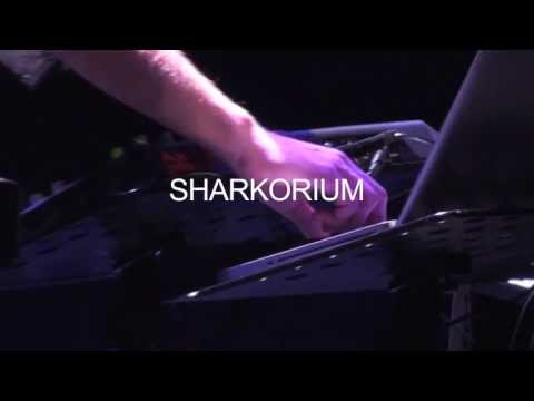 SUPERBELLE - Sharkorium - Live