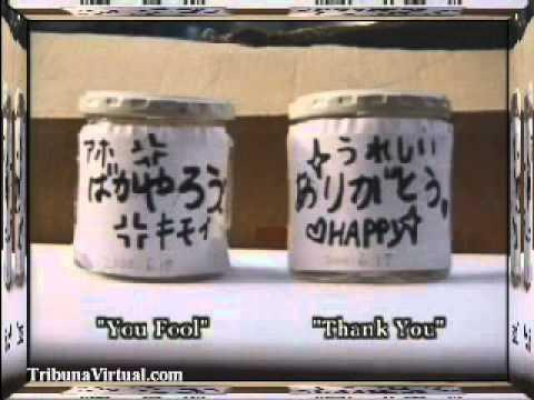 Mensajes del Agua (3/4) Masaru Emoto