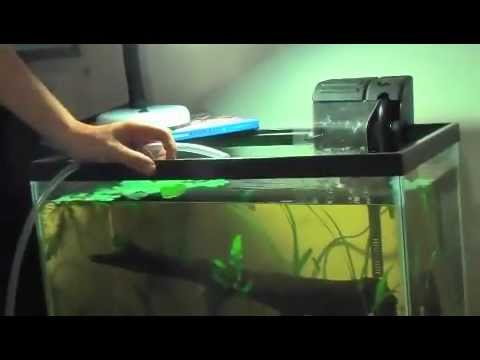 How-To: Water Changes With a Hose (No Siphon)