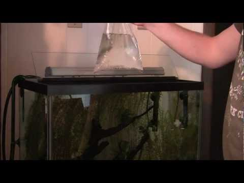 Dirty Little Secrets:  Acclimation using the Floating Method
