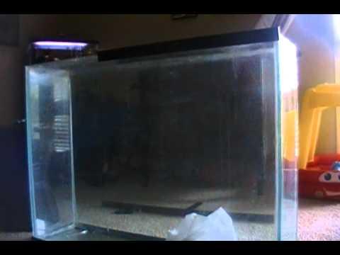 Aquarium Got Stolen!!!