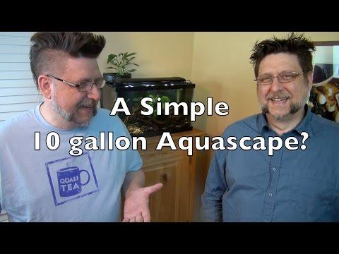 A Simple 10 gallon Aquascape?