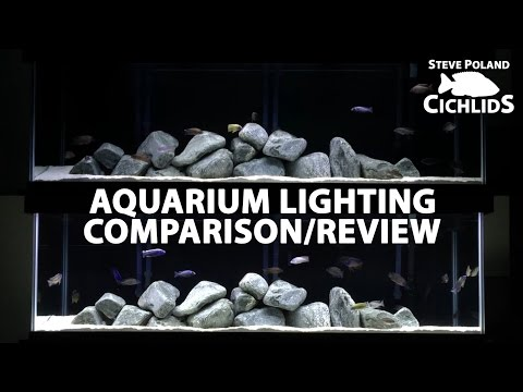 African Cichlid Aquarium Lighting Comparison/Review