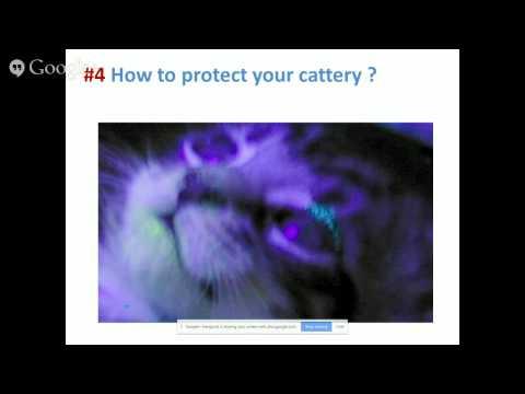 Feline Infectious Diseases Webcast series : Part V
