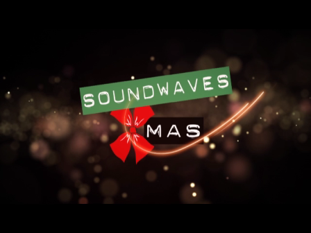 Soundwaves Christmas 2016!