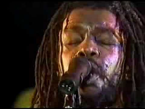 peter tosh - bush doctor [ 83 holland ] w/DONALD KINSEY