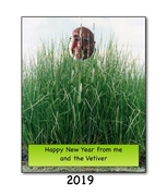 Vetiver New Year