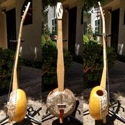 Gourd Banjo #24