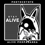 Photocoyote