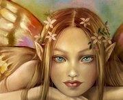 Anjana Wild