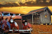 Rust car, birds, and Cabin