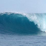 surfisgood