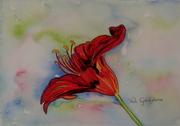 Campunala Flower