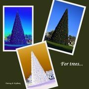 For trees (Για τους... τρεις)