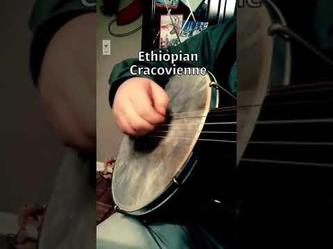 Ethiopian Cracovienne