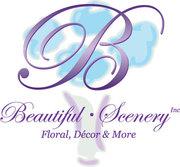 Beautiful Scenery Inc