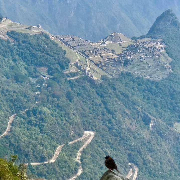 Peru Tourist Information