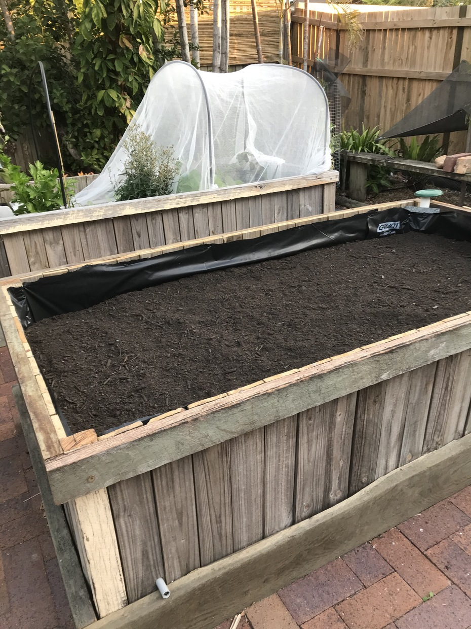 Wicking bed filled