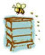 Urban Bees Ltd