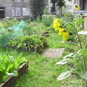 Cordwainers Garden