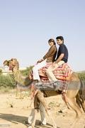 desert safari picture