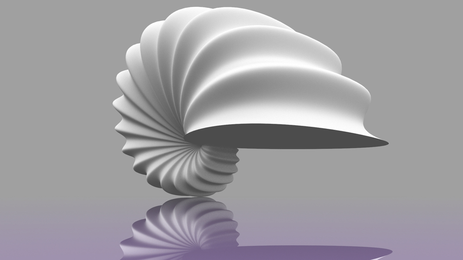 sea shell 3d modeling