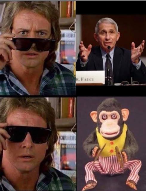 2020 like nwo's lil monkey
