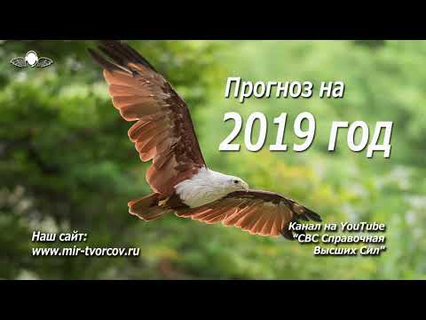 539 Прогноз на 2019 год