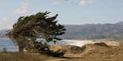 Easy Hike at Wavecrest with POST
