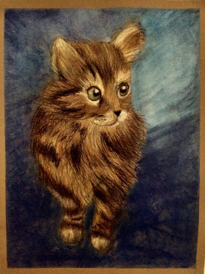 kitten in color