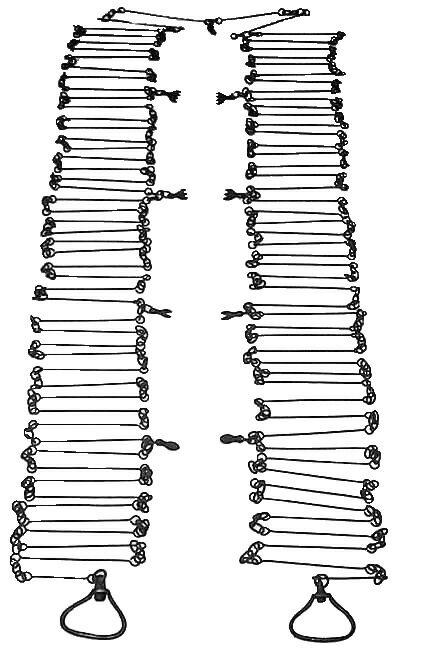 Gunters Chain