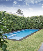 courtyard pools in Melbourne
