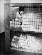home bed shelter ww2 3 morrison shelter