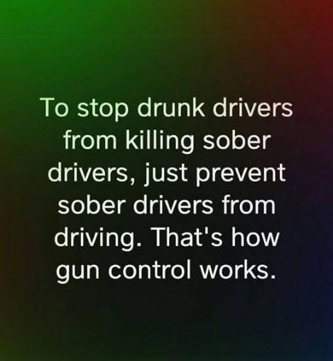 How Gun Control Works