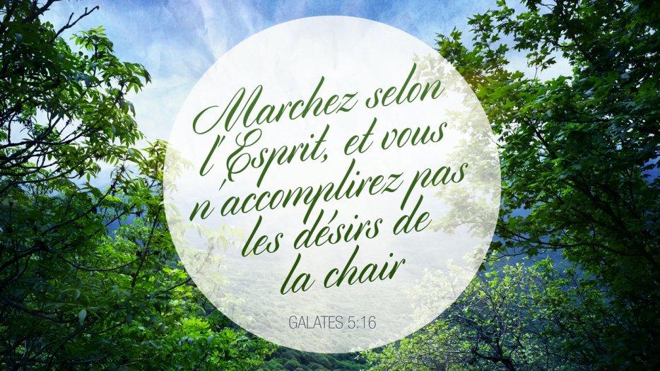 « Marchez selon l'Esprit, et vous n'accomplirez pas les désirs de la chair. » (Galates 5:17)